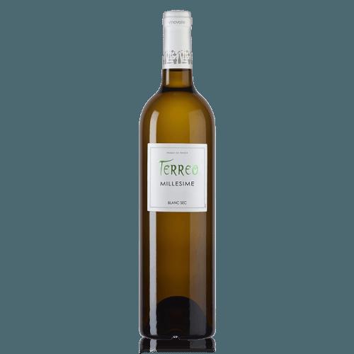 Terreo vin Blanc sec