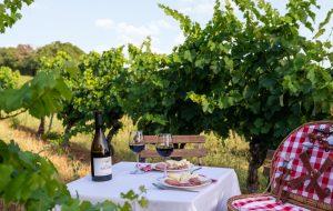 Accord mets et vins Château Tauziès rouge