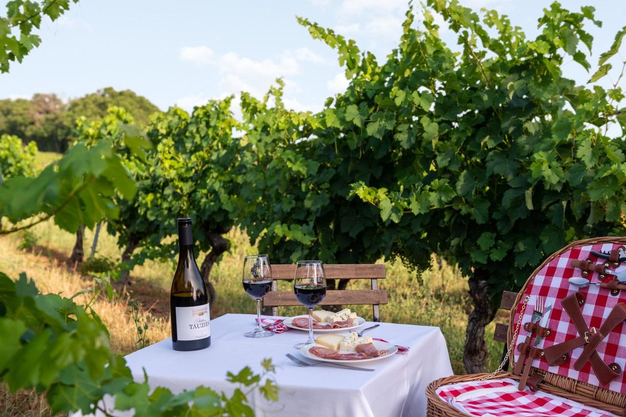 Accord mets et vins : Château Tauziès rouge avec de la charcuterie et du fromage