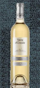 Terre d'Ovalie vin blanc doux Gaillac
