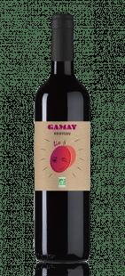 vin Gamay nouveau bio