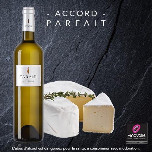 vin blanc sec et camembert